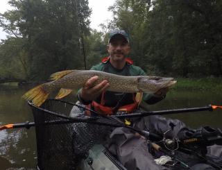 Age Fish Sept