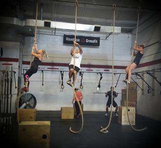 Ropes 7