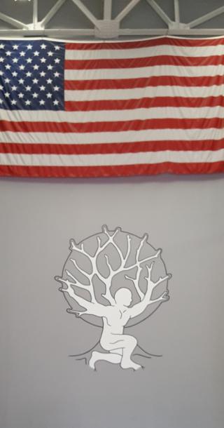 3.0 Flag Logo