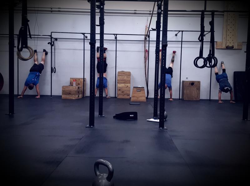 Wall climbs 530 blue shirts