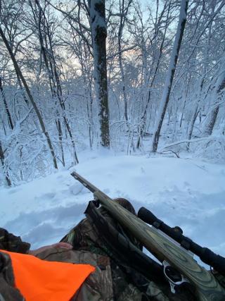 FOSS Hunt -