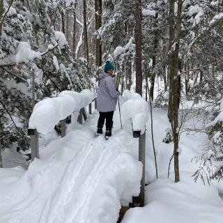 FOSS xc ski -
